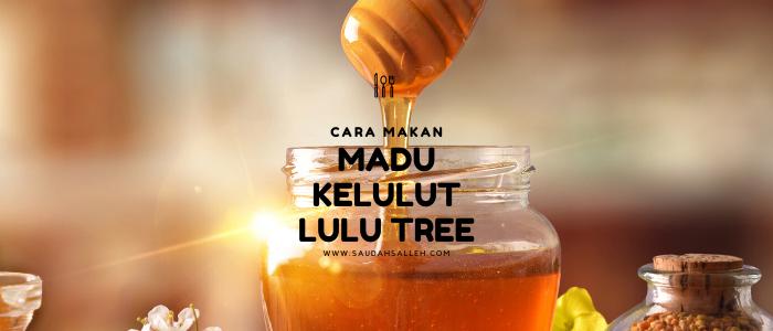 Cara Makan Madu Kelulut dari Lulu Tree PeDAS